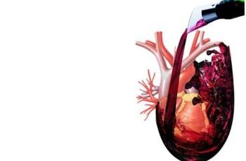 Bom para o coração, mesmo, é diminuir consumo de álcool