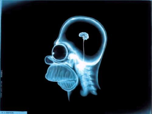 Fumar maconha por mais de seis anos pode causar anormalidades no cérebro