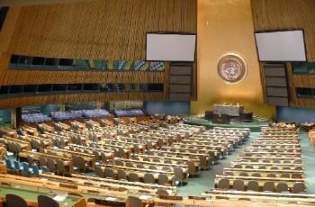 CONED discute Sessão Especial sobre Drogas da ONU