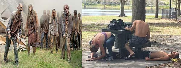 """Nova temporada de """"The Walking Dead""""? Não: droga sintética!"""