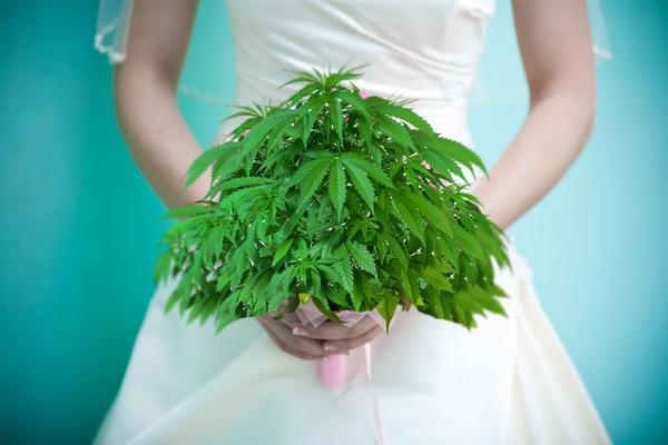 Casamentos canábicos. É, você leu direito