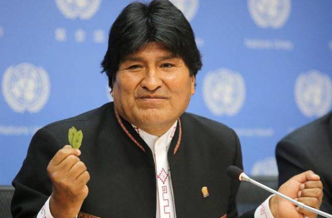 Bolívia quer 'desmonizar' o uso da folha de cocaína